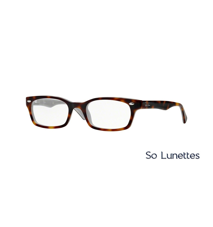 ray ban lunette homme